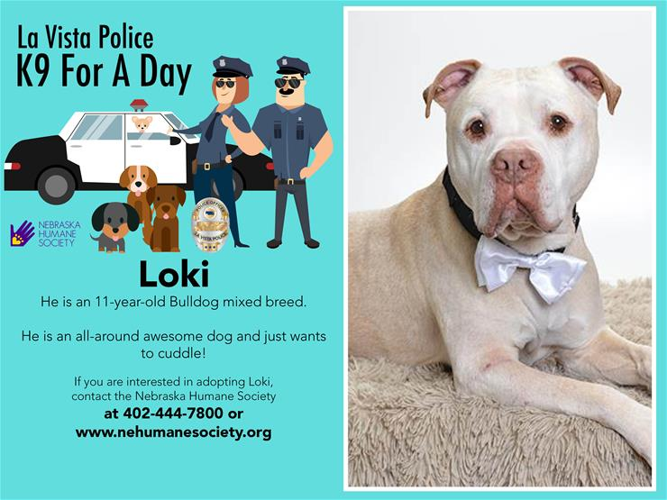 La Vista Police K9 For a Day flyer with a picture of a bulldog